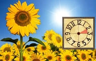 summertime-clock_190x120